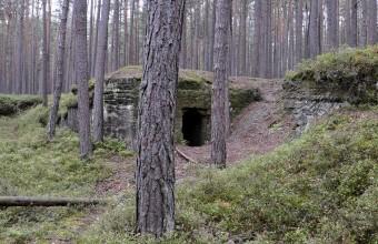 Bierkeller-im-Staatswald